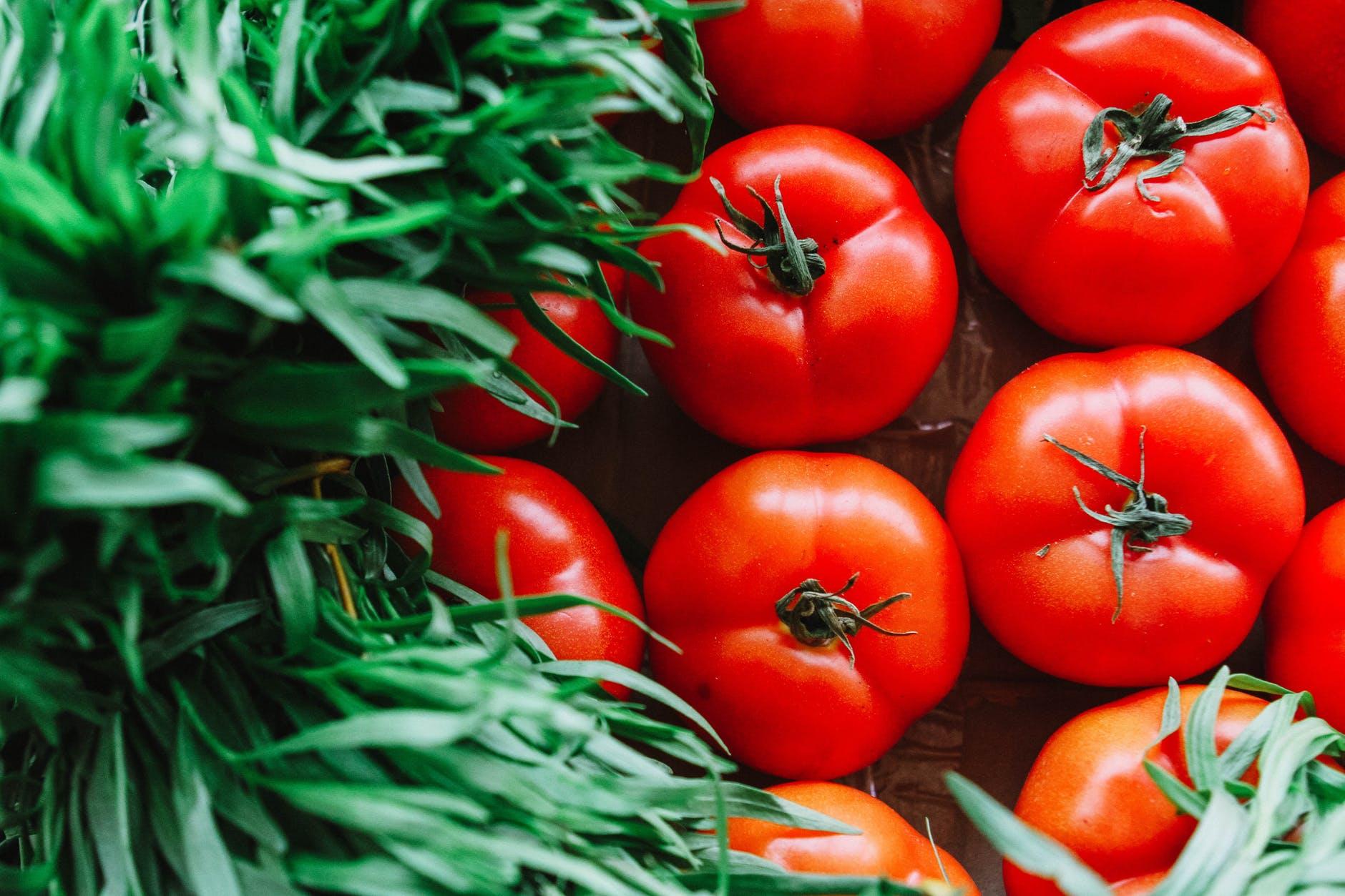 pomidor na zdrowie okiem dietetyka