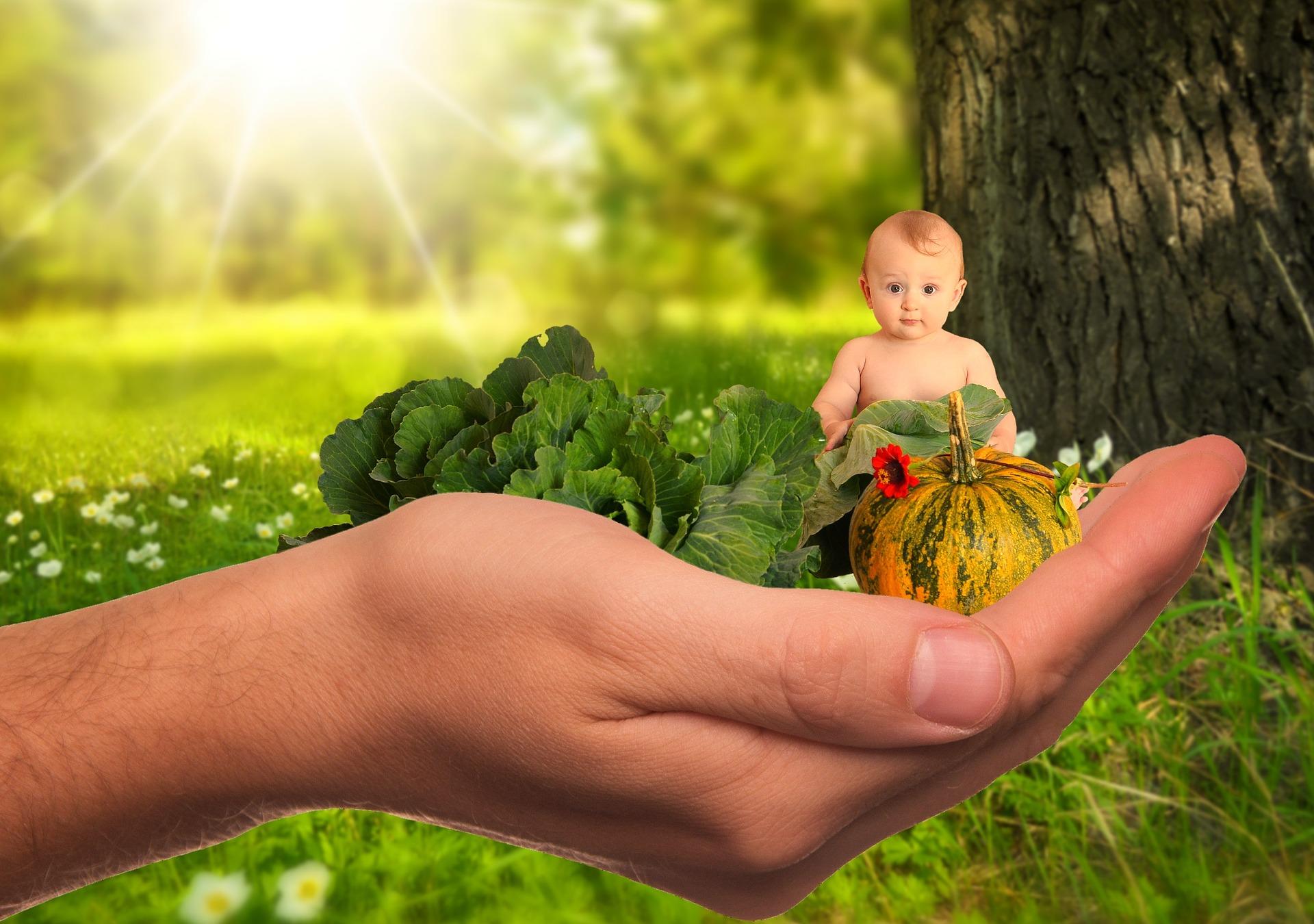 zdrowe odżywianie dzieci i młodzieży