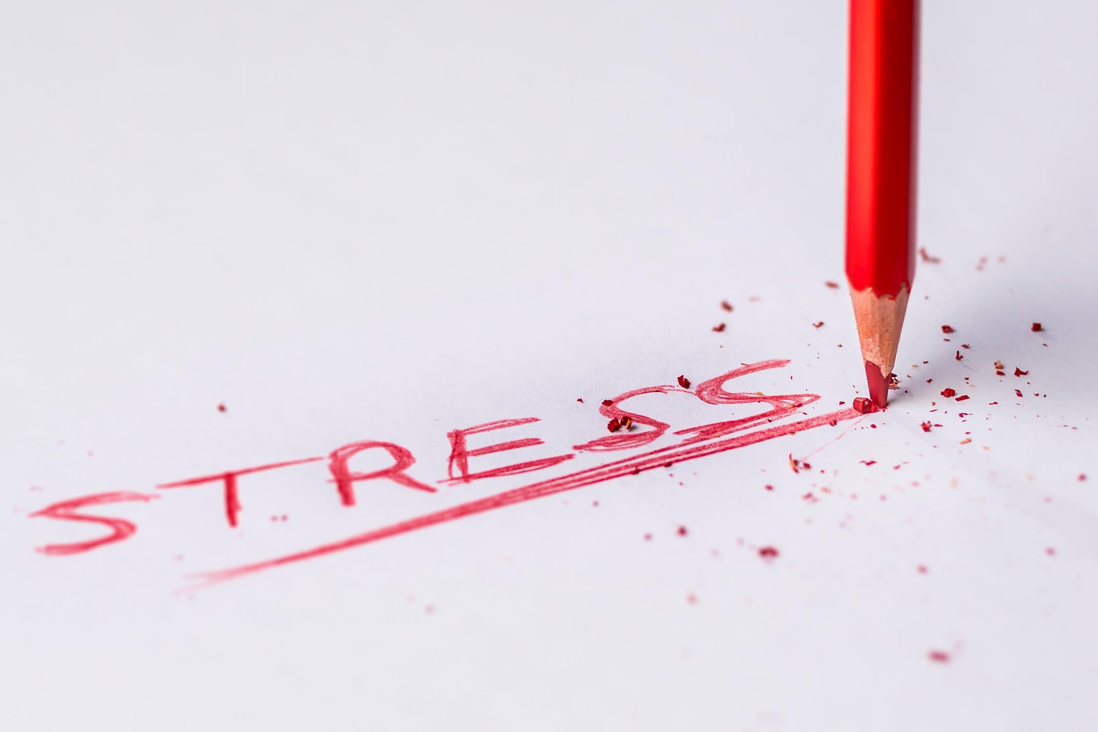 Produkty pomagające złagodzić stres